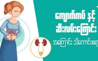 MyanCare Urine and Kidneys 1