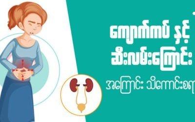 MyanCare Urine and Kidneys 1