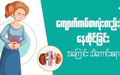 MyanCare Urine and Kidneys 2