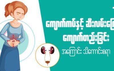 MyanCare Urine and Kidneys 3