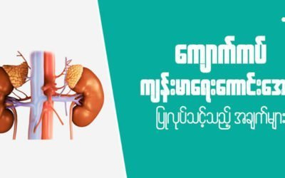 MyanCare Urine and Kidneys 4