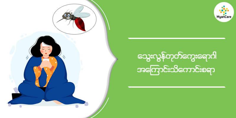 သွေးလွန်တုတ်ကွေးရောဂါဆိုတာ မြန်မာနိုင်ငံလိုမျိုး ဖွံ့ဖြိုးဆဲနိုင်ငံများအတွက် ကလေးများရဲ့ အသက်ကို အဓိက ဒုက္ခပေးနေသော ရောဂါတစ်မျိုးဖြစ်ပါတယ်